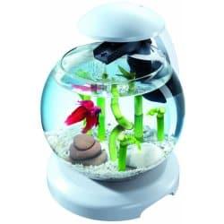 Recenzia Tetra Cascade LED akvarijní set 6,8 l biely