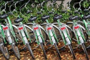 Bicykle v stojane